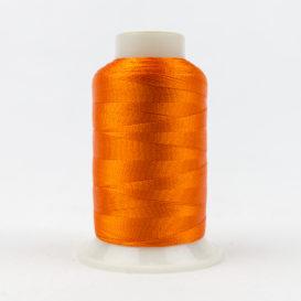 Splendor Medium Tangerine